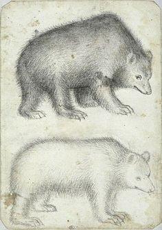 Pisanello Codex Vallardi