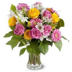 Complimenti: rose rosa e gialle