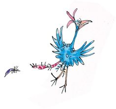 roly poly bird - Google Search