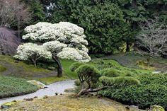 America's Most Fascinating Public Gardens Japanese Garden Style, Japanese Gardens, Landscape Design, Garden Design, Path Edging, Garden Waterfall, Bainbridge Island, Longwood Gardens, Public Garden