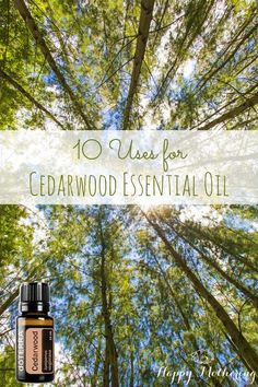 Like other tree essential oils, cedarwood essential oil is a grounding oil with many uses. Come learn how you can use cedarwood essential oil in your home.