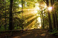 Où partir en octobre : les meilleures destinations d'automne - Linternaute