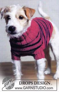 DROPS striped dog sweater Free knitting pattern by DROPS Design. Knitted Dog Sweater Pattern, Knit Dog Sweater, Dog Pattern, Pajama Pattern, Knitting Patterns Free Dog, Free Knitting, Pet Sweaters, Dog Jumpers, Tricot Facile