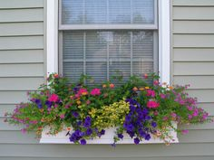 I want window flower boxes -- I love this flower color combination!