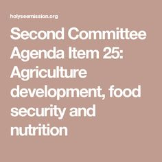 Second Committee Agenda Item 25: Agriculture development, food security and nutrition