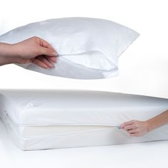 mattress covers for bed bugs reviews - Bed Bug Protector