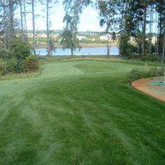 Combat Extreme™ Transition Zone - This is a 4-way turf type fescue grass seed blend has fine to medium leaf blades which allow it to form a dense turf and because it is a lower growing cultivar, mowing requirements and clipping yields can be reduced up to 30 percent.