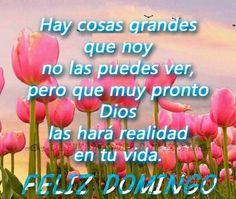 #frases #Dios #Domingo