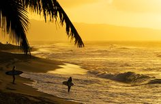 KIRSTIN SCHOLTZ - IMAGES - Earth 'n Sea - Surfer Girls at Sunset