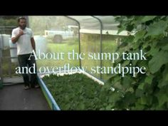Nanawale Aquaponics Tour - YouTube