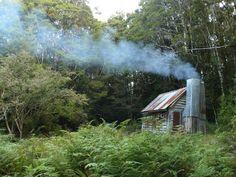 My dream hut in the bush Australian Bush, Wilderness, My Dream, New Zealand, Scenery, Warm, Landscape, House Styles, Places