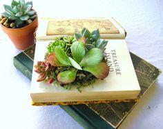 Succulent Centerpiece Vintage Book Planter by RootedInSucculents, $45.00