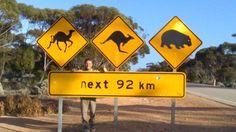 cartelli in australia- google