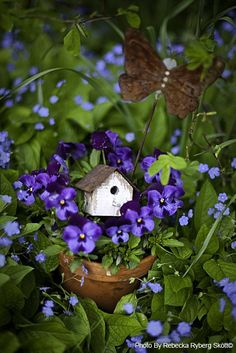 Violets and birdhouse in container...lovely.                                                                                                                                                      More