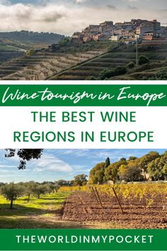 Europe has some pretty amazing wine tourism destinations. From the vineyards in Italy to the wineries in France, discover all the ones in between. Some of the best vineyards in Europe are in country you wouldn't expect: Montenegro, Romania, Switzerland, even England. Plan your next wine trip to a European vineyard. European Destination, European Travel, Europe Travel Guide, Travel Guides, Travel Destinations, Travelling Europe, Wine Tourism, Wineries, Travel Inspiration