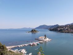 Mouse island Corfu. Greece-a mouse I am not afraid of®