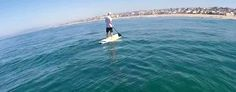 Dolphin body slams into paddle boarder (Jukin)