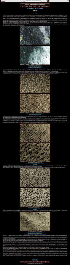 Mars Bio Life Samples