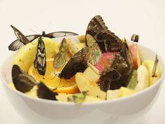 """Obra """"In and Out of Love"""", de Damien Hirst, mostra borboletas vivas sobre pedaços de frutas."""