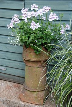 An old chimney pot is now a beautiful planter. Created by Bleu-Clair in her garden <3