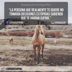 Nunca lo haría.! ____________________ #teamcorridosvip #corridosvip…