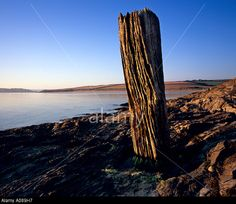 Image from http://c8.alamy.com/comp/A089H7/old-mooring-timber-post-at-sunrise-at-hawkers-cove-padstow-north-cornwall-A089H7.jpg.