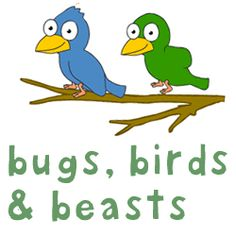Bugs, Birds and Beasts Northern Ireland, Languages, Curriculum, Bugs, Disney Characters, Fictional Characters, Culture, French, Living Room