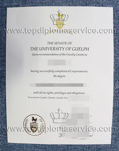 university of york degree certificate buy fake uk diploma  the university of guelph degree buy fake diplomas buy diploma buy degree make diploma make degree