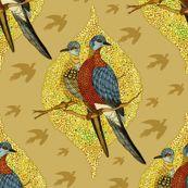 Extinct birds - Passenger pigeons