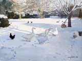 Geese in the Snow by Lucy Willis