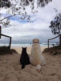 Besties at The Beach