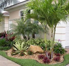 50 Florida Landscaping Ideas Front Yards Curb Appeal Palm Trees_6