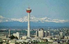 First time I lived in Calgary, the tower was the tallest building! Calgary Alberta Canada I really wish to go there :) Ottawa, Tens Place, By Train, Thats The Way, Birds Eye View, Old Postcards, Alberta Canada, Outdoor Life, Calgary