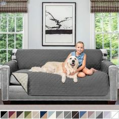 The Best Couch Covers for Pets Review - Rescue Best Sofa Cushion Covers, Sofa Covers, Cushions On Sofa, Best Couch Covers, Best Sofa, Furniture Slipcovers, Couch Furniture, Slipcover Sofa, Furniture Price