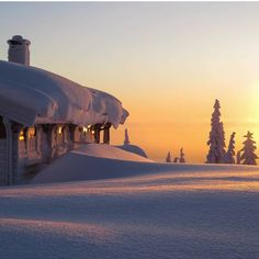 This would be an awesome view to wake up to, then go out and play in it. #snow #winter