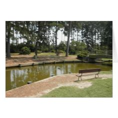 #photo - #Pretty Day In The Park Card