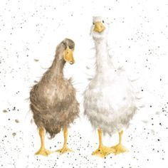 CS034 - 'Friends Since Egghood' | Wrendale Designs