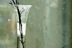 Photocase - 'Vase' a photo by 'zettberlin'