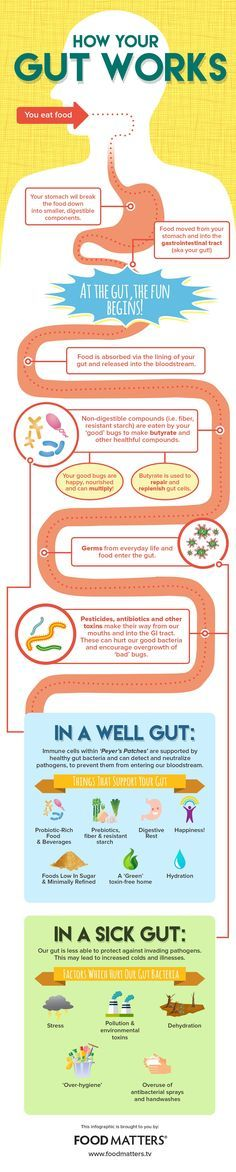 While we are on the topic of healing your gut naturally, check out this infographic on how things work!