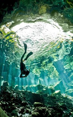 Cenote diving - YucatA?n Peninsula, Mexico | See more about Scuba Diving, Underwater Caves and Underwater. | See more about Diving and Mexico.