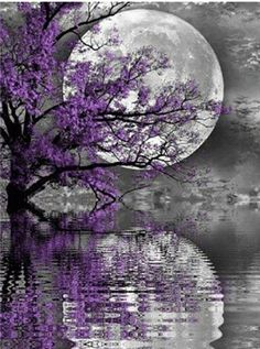 ^^ I really appreciate this beautiful moon with the reflection on gentle rippling water. Beautiful Moon, Beautiful Wallpapers, Beautiful Nature Wallpaper, Tree Painting, Painting, Art, Pictures, Beautiful Landscapes, Beautiful Art