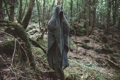 Aokigahara Forest: A Perfect Place to Die