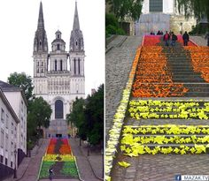 New Origami Street Art by Mademoiselle Maurice Made of 30000 Folded Components (9 pics):