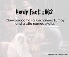 In the force awakens he has a girlfriend that's not a wookiie??