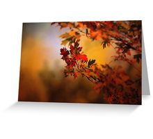 Greeting Card20% off everything. Use SPOOKY20