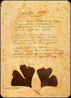 Dieses Baumes Blatt, der von Osten  Meinem Garten anvertraut,  Gibt geheimen Sinn zu kosten,  Wie's den Wissenden erbaut.  Ist es ein lebendig Wesen,  Das sich in sich selbst getrennt?  Sind es zwei, die sich erlesen,  Dass man sie als eines kennt?  Solche Fragen zu erwidern Fand ich wohl den rechten Sinn.  Fühlst du nicht an meinen Liedern,  Dass ich eins und doppelt bin ? Goethe dedicated this poem to his beloved, Marianne von Willemer.
