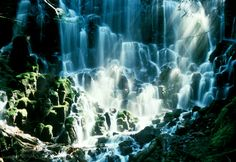 Ramona Falls, Zigzag OR   © Marsha K. Russell