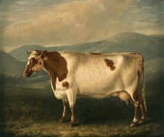 """Ayrshire cow by William Shiels (1785-1857)"""