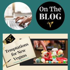 There can be a lot of temptations for new vegans especially when they're not sure how to handle a situation or the social pressures they're faced with. LINK IN #newvegans A Whole New World, What You Eat, Vegans, When Someone, Places To Eat, Traveling By Yourself, Stuff To Do, Told You So, Handle