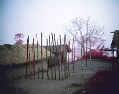 Richard Mosse's Infrared Congo Photography in The Enclave